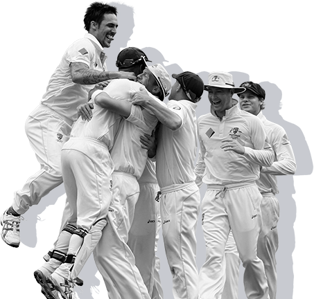 cricket-celebrate.png